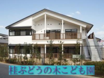 桂ぶどうの木こども園:京都市西京区*桂駅徒歩10分・シフト制