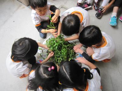 「大きくなってね♪」自分たちで育てた野菜は格段においしいね!