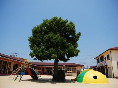 新城保育園|長崎県~働き方は応相談、残業ほぼなし*固定時間