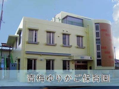 青梅ゆりかご保育園|東京都青梅市*時間帯・日数は要相談